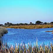 Saint Marks National Wildlife Refuge Lagoon Poster