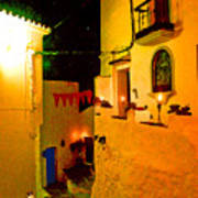 Salares By Night With Cat Poster