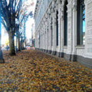 Autumn In Salem Poster