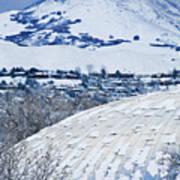 Salt Lake City Tabernacle In Snow Poster