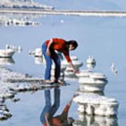 Salt Pillars In Dead Sea Poster