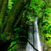 Salto Do Prego Waterfall Poster