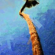 San Clemente Beach Palm Poster by Ron Regalado
