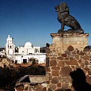 San Xavier Lions Poster
