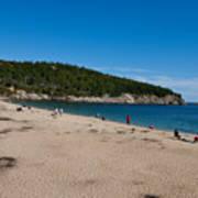 Sand Beach Acadia National Park Poster