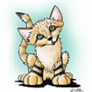 Sand Cat Poster