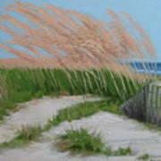 Sand Dunes  No 2 Poster