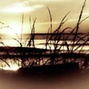 Sand Dunes Sunset Poster
