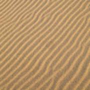 Sand Patterns Poster