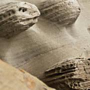 Sand Spirits Poster