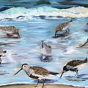 Sandpiper Party Poster