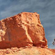 Sandy Rock In Morning Light Poster
