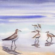 Sanibel Beach And Birds Poster