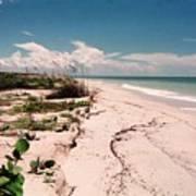 Sanibel Beach I Poster