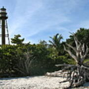 Sanibel Light And Driftwood Poster