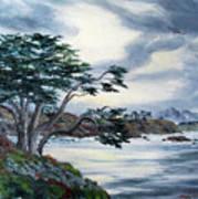 Santa Cruz Cypress Tree Poster