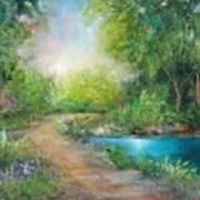 Santa Rosa Creek Path Poster