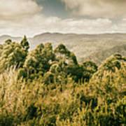 Savage River Lookout, Tarkine, Tasmania Poster