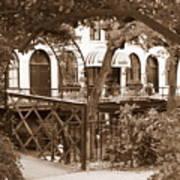Savannah Arches In Sepia Poster