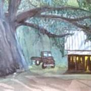 Savannas Backwoods Poster