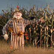 Scarecrow In A Corn Field Poster