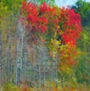 Scarlet Autumn Burst Poster