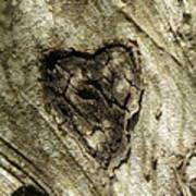 Love Endures Poster