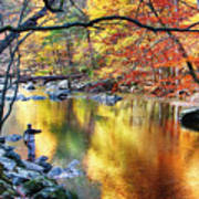 Scenic New Jersey Fall Fly Fishing  Poster