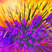 Sea Anemone Abstract - Kooosh Ball Poster