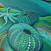 Sea Anemone Kina By Reina Cottier Poster