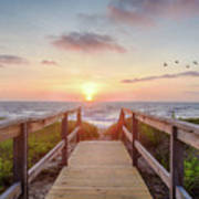 Sea Birds At Sunrise Poster