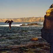 Sea Cliff Poster
