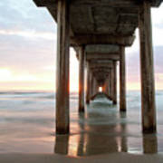 Sea Gull Watching At Scripps Pier Poster