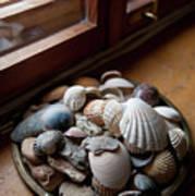 Sea Shells And Stones On Windowsill Poster