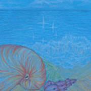 Sea Shore Poster
