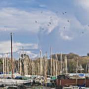 Seagulls Over Mylor Creek Boatyard Poster