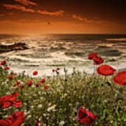 Seascape With Poppies Poster
