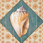 Seashells-jp3620 Poster