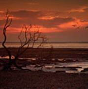 Seashore At Dawn Poster