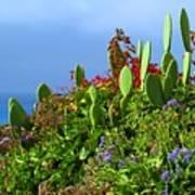 Seaside Garden Poster