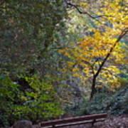 Romantic Autumn Rendezvous Poster
