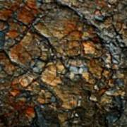 Sedimentary Abstract Poster