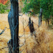 Sedona Fence And Field Poster