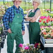 Senior Gardener And Middle-aged Gardener At Work. Poster