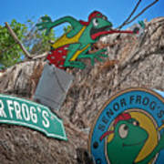 Senor Frog's - Playa Del Carmen Poster