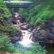 Sentinel Pine Bridge Flume Gorge Poster