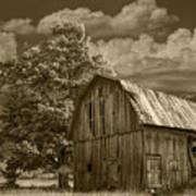 Sepia Michigan Barn Landscape Poster
