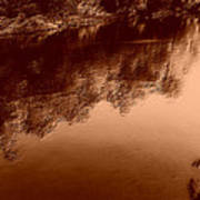 Sepia River Poster