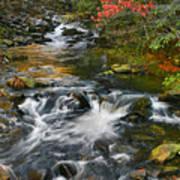 Serene Mountain Stream Poster