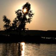 Setting Sun At Cypress Hills Poster